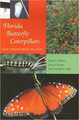 Florida Butterfly Caterpillars