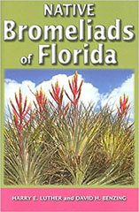 Native Bromeliads of Florida